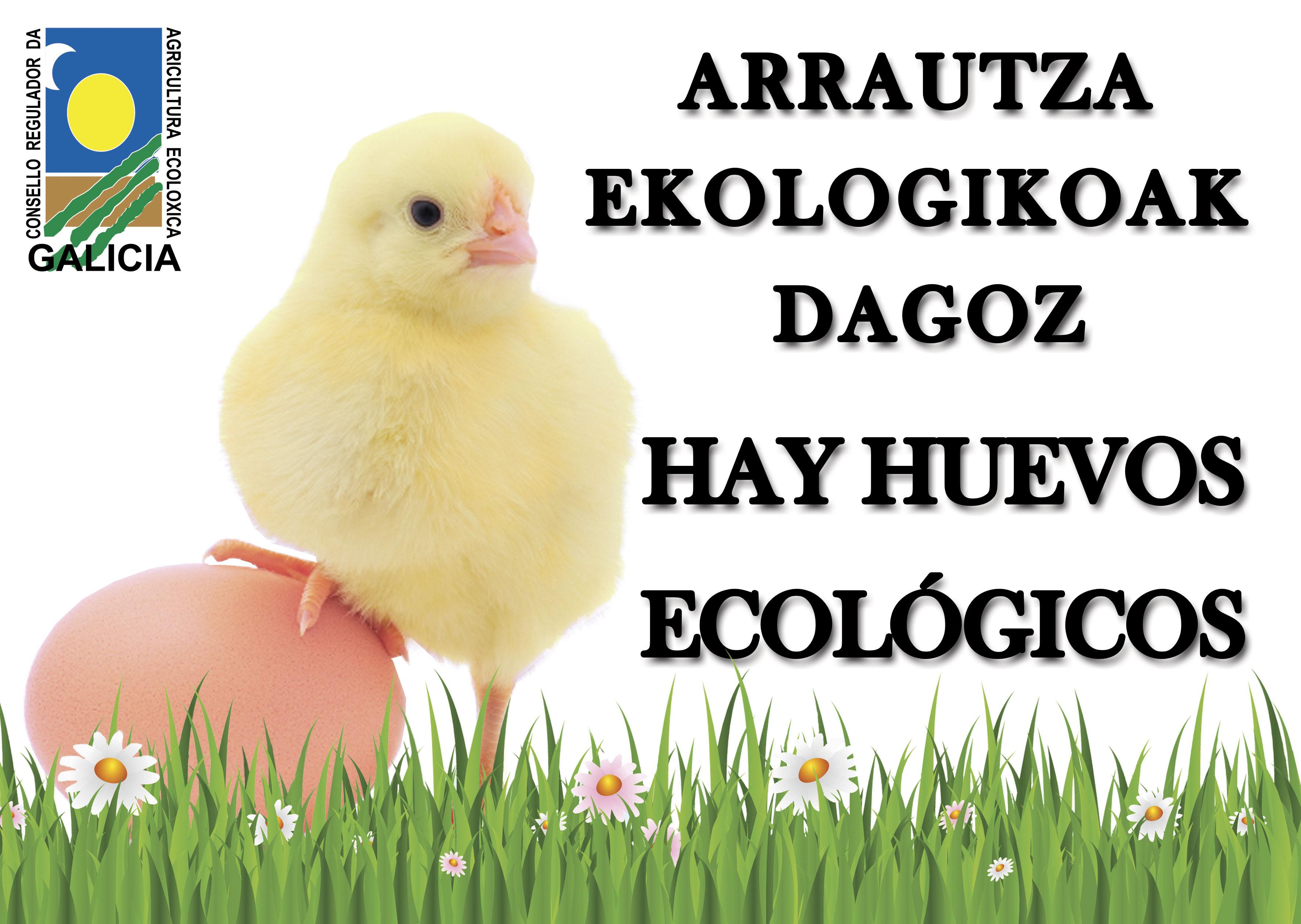 Cartel Huevos Ecológicos